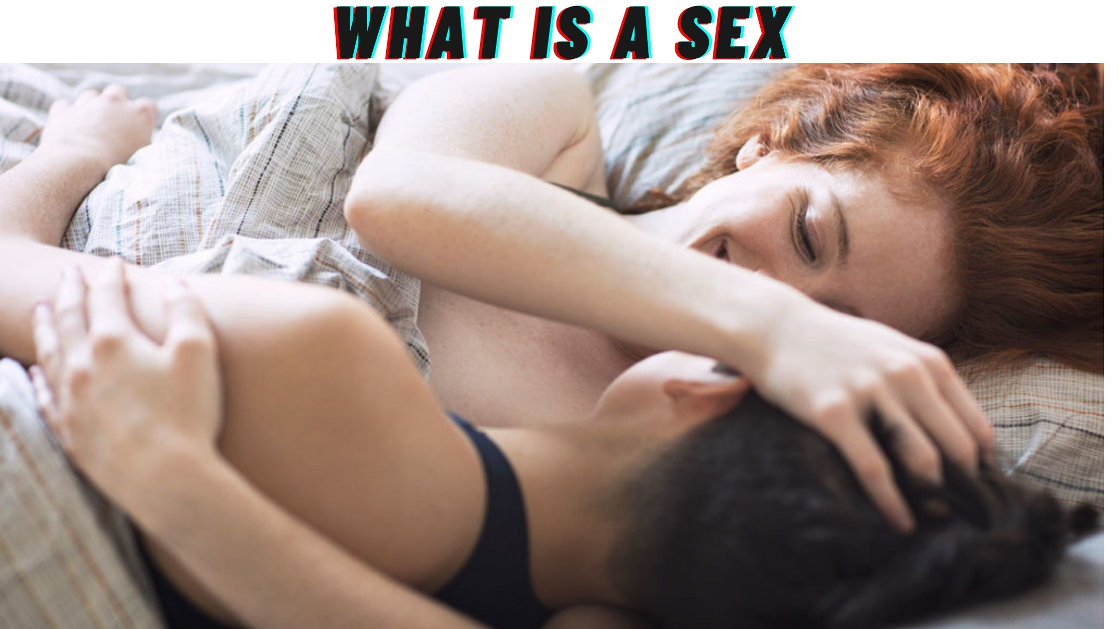 what is a sex